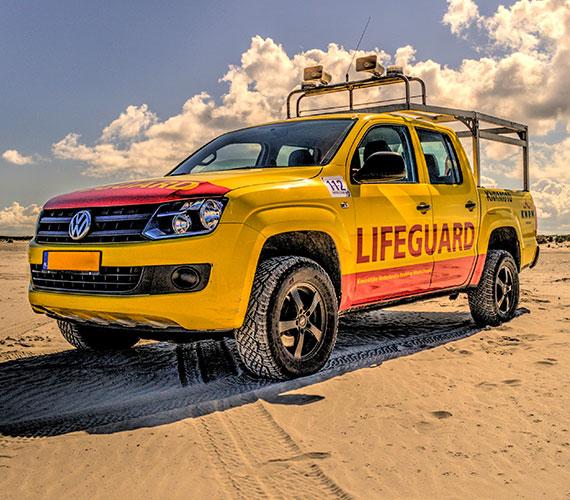 Best Vehicle Wraps & Graphics Examples